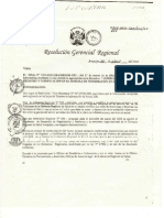 Directiva 005 -2010 His