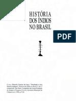 CUNHA, M. C._Introdução a uma história indígena_História dos índios no Brasil