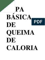 SOPA BÁSICA DE QUEIMA DE CALORIASORIGEM