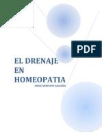 drenajeenhomeopatia