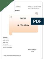 Exposé sur la pollution