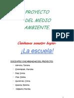 Proyecto Del Medio Ambiente 2012