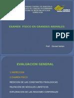 Examen Clinico Del Equino y Bovino2010-1