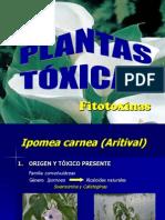 Plantas Toxicas Merilio Maracay2