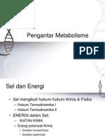 PengantarMetabolisme 2009 Print