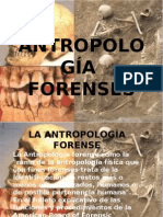 _MATERIAL-2 Antropologia Forense