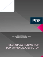 Neuroplasticidad Plp Dlp Aprendizaje, Ppt