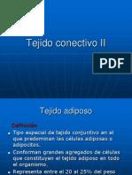 Tejido Conectivo II
