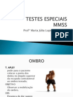 Aula 3 Testes Especiais MMSS