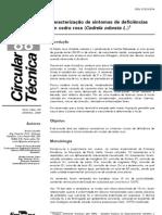 ct88_cedrorosa