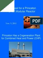 Princeton Micro Reactor