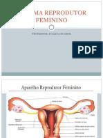 4. Sistema Reprodutor Feminino