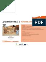 DIPTICOs Biomasa