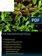 Pseudomonads & Acinetobacters