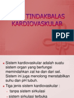 Pola Tindakbalas Kardiovaskular