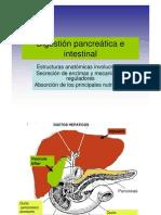 Absorcion Gastrointestinal