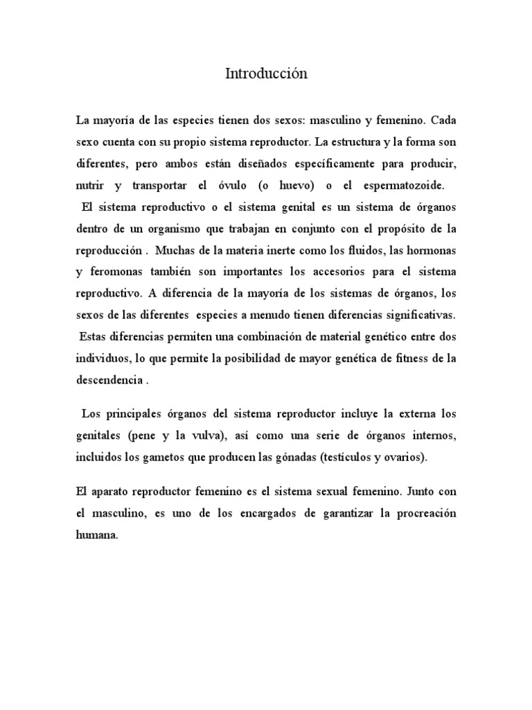 Encantador Anatomía Y Fisiología Del Sistema Reproductivo ...