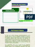 Fisiologia de Cultivos - Fotosintesis Respiracion