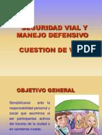 Seguridad Vial 2011