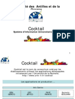 Presentation Cocktail Uag