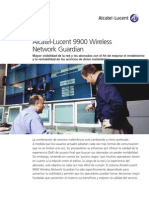 9900 WNG Brochure ES