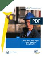 Labour Market Report-Thunder BayDistrictMiningIndustry