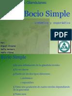 Bocio Simple