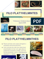 Animal Platelmintos