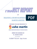 Usha Martin Final Project