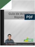 Guia Acci on Rapid A
