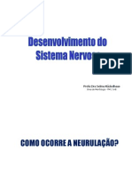 Desenvolvimento Do Sistema Nervoso