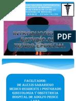PONENCIA TEJIDO EPITELIAL