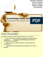 Knowledge Audit and Analysis
