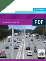 Shareholders Guide 2011Website