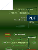 Direito Ambiental e Os Crimes Ambientais