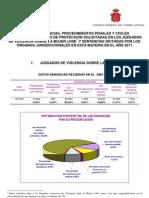 Datos JVM Anual 2011
