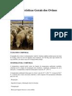 Características Gerais dos Ovinos