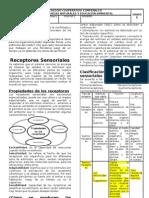 Guia de Receptores Sensoriales (1)
