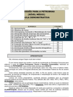 611-Demo-Aula 00 Portugues Para PETROBRAS Medio(1)