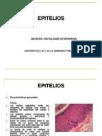 10.-_EPITELIOS histologia