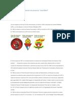 Historia de la organización de pioneros
