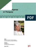 Pueblos Indígenas de Paraguay 2010-GTZ