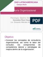 Consultoría Organizacional GONZALEZ CLAUDIA