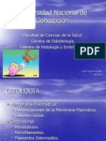 Citologia - Membrana Plasmática - Citoesqueleto