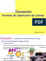 1BTO CMTU05 Clonacion Present