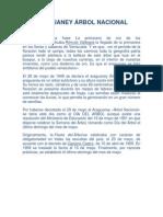 ARAGUANEY ÁRBOL NACIONAL