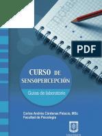 Curso de sensopercepción. Guías de laboratorio