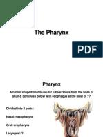 The Pharynx E-learning