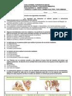 Evaluación 4. Excreción en Invertebrados y Vegetales