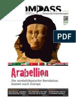 Piratenpartei Zeitung, Kompass Ausgabe 2011.2